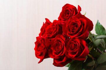red rose online